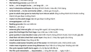 ielts writing task 1 từ vựng cho dạng natural process