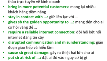 bai-mau-ielts-writing-task-2-online-business-meetings-3