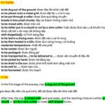 tu-vung-ielts-writing-task-1-process